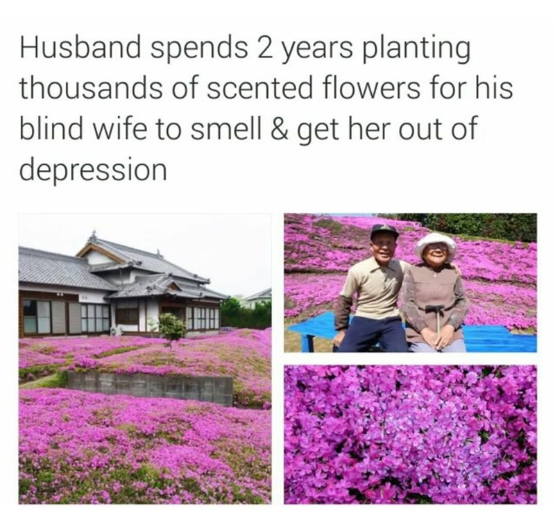 Flower - Husband spends 2 years planting thousands of scented flowers for his blind wife to smell & get her out of depression