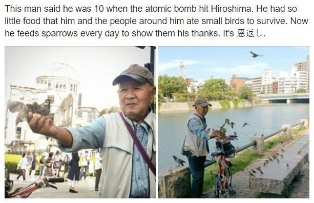 Adaptation - This man said he was 10 when the atomic bomb hit Hiroshima. He had so little food that him and the people around him ate small birds to survive. Now he feeds sparrows every day to show them his thanks. It's