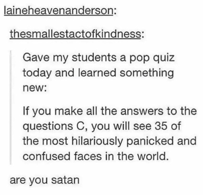 meme - Text - laineheavenanderson: thesmallestactofkindness: Gave my students a pop quiz today and learned something new: If you make all the answers to the questions C, you will see 35 of the most hilariously panicked and confused faces in the world. are you satan