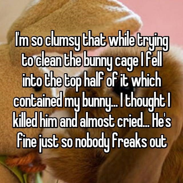 clumsy - Text - Imso clumsy that whiletrying boclean the bunny cage lfel nto the top half of it which contained my bunny.. thought killed him and almost cried He's fine just so nobody Freaks out