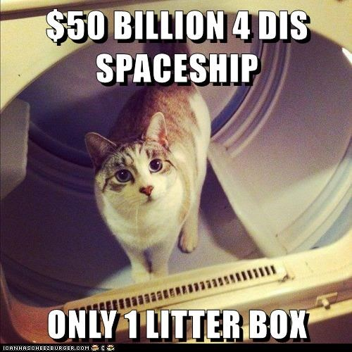 ONLY 1 LITTER BOX