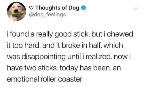 Text - Thoughts of Dog @dog feelings i found a really good stick. but i chewed it too hard. and it broke in half. which was disappointing until i realized.now i have two sticks. today has been. an emotional roller coaster