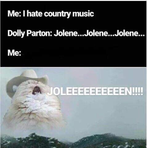 Text - Me: I hate country music Dolly Parton: Jolene... .Jolene... Jolene... Me: JOLEEEEEEEEEEN!!