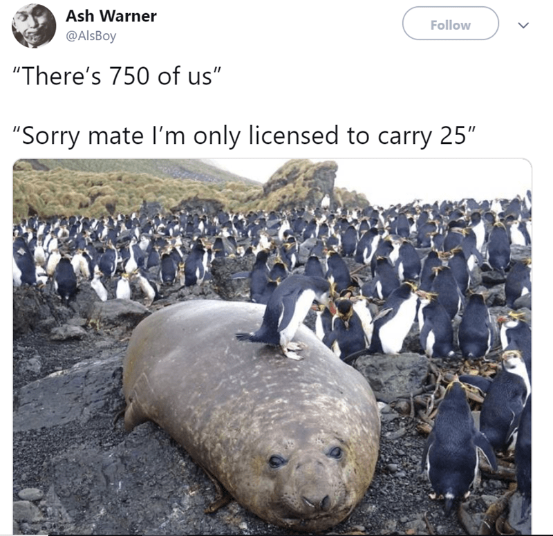 """Marine mammal - Ash Warner Follow @AlsBoy """"There's 750 of us"""" """"Sorry mate I'm only licensed to carry 25"""""""