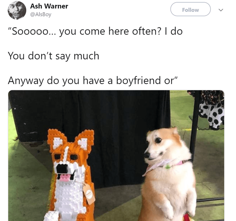 """Dog - Ash Warner Follow @AlsBoy """"Soooo0... you come here often? I do You don't say much Anyway do you have a boyfriend or"""""""