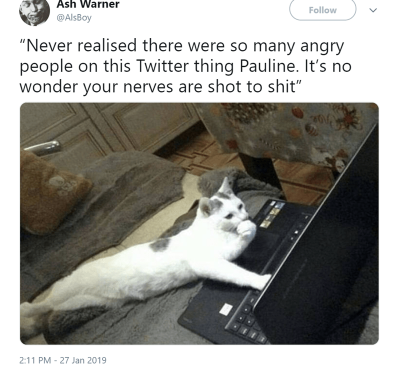 """Photo caption - Ash Warner Follow @AlsBoy """"Never realised there were so many angry people on this Twitter thing Pauline. It's no wonder your nerves are shot to shit"""" 2:11 PM 27 Jan 2019"""