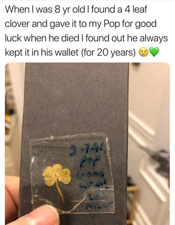 Text - When I was 8 yr old I found a 4 leaf clover and gave it to my Pop for good luck when he died I found out he always kept it in his wallet (for 20 years) 744