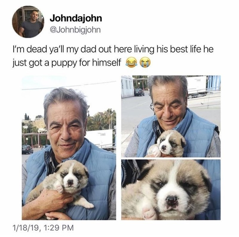 "Vertebrate - Johndajohn @Johnbigjohn I'm dead ya'll my dad out here living his best life he just got a puppy for himself ""in int 1/18/19, 1:29 PM"