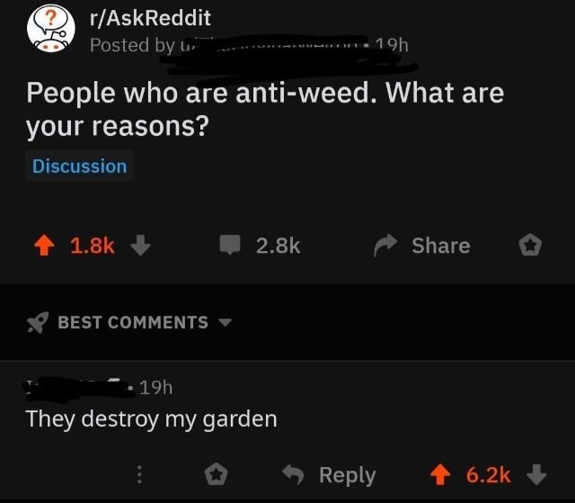 dumb but true - Text - r/AskReddit Posted by 19h People who are anti-weed. What are your reasons? Discussion 1.8k Share 2.8k BEST COMMENTS 19h They destroy my garden 6.2k Reply