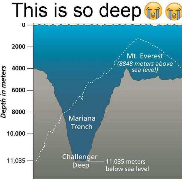 dumb but true - Text - This is so deep Tel 2000 Mt. Everest (8848 meters above sea level) 4000 6000 8000 Mariana Trench 10,000 Challenger 11,035 meters Deep 11,035 below sea level Depth in meters