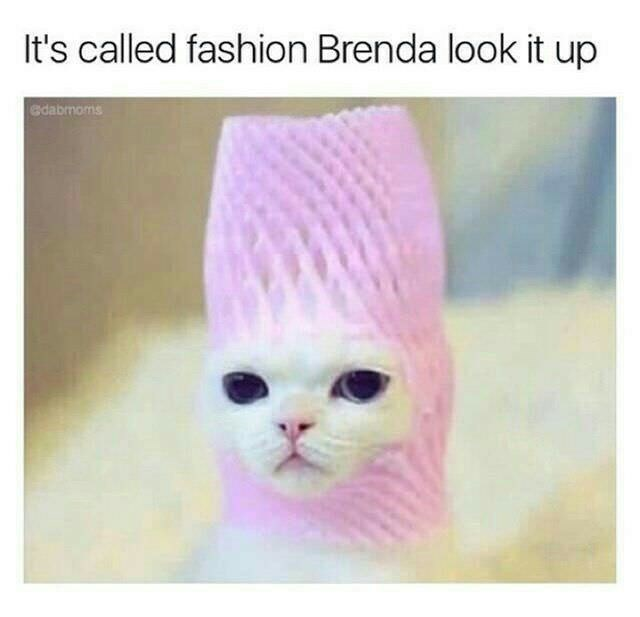 Cat - It's called fashion Brenda look it up edabmoms