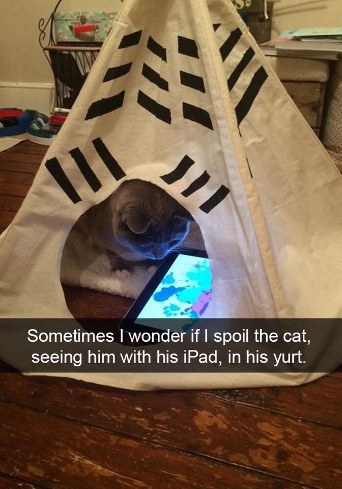 """Pic of a cat in a tipi with an iPad and Snapchat caption that reads, """"Sometimes I wonder if I spoil the cat, seeing him with his iPad, in his yurt"""""""