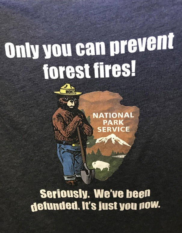 Text - Only you can prevent forest fires! WOKE NATIONAL PARK SERVICE Seriously. We've been defunded. It's just you now.