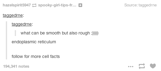 Text - Source: taggedrne hazelspirit5947spooky-girl-tips-fr... taggedrne taggedrne what can be smooth but also rough) endoplasmic reticulum follow for more cell facts 194,341 notes 1