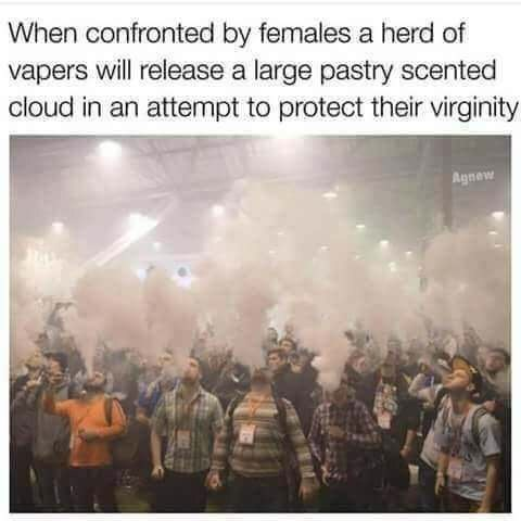 "Caption that reads, ""When confronted by females, a herd of vapers will release a large pastry-scented cloud in attempt to protect their virginity"" above a pic of a bunch of nerds vaping at a convention"