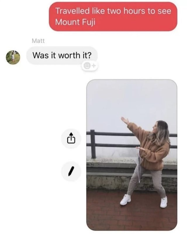 Text - Travelled like two hours to see Mount Fuji Matt Was it worth it?