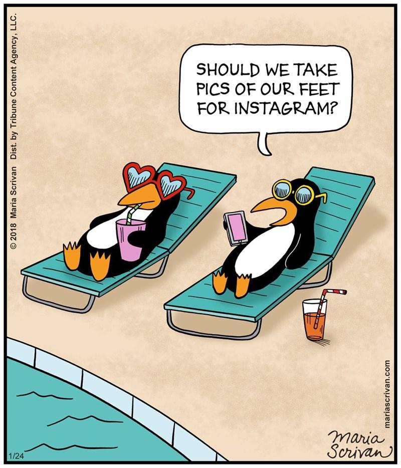 Cartoon - SHOULD WE TAKE PICS OF OUR FEET FOR INSTAGRAM? maria Scrivan 1/24 O 2018 Maria Scrivan Dist. by Tribune Content Agency, LLC. mariascrivan.com