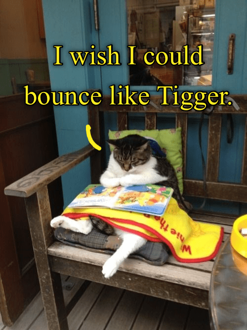 Photo caption - I wish I could bounce like Tigger M hie the