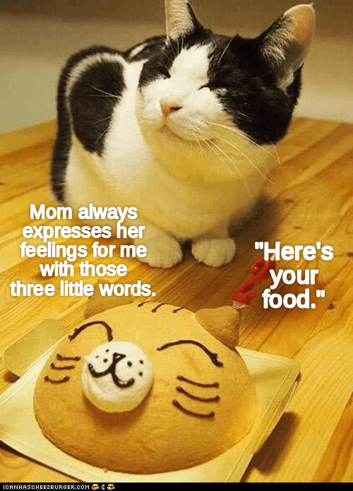 "Cat - Mom always expresses her feelings for me with those three little words. ""Here's your food."" CANHASCHEE2EURGERCOM"