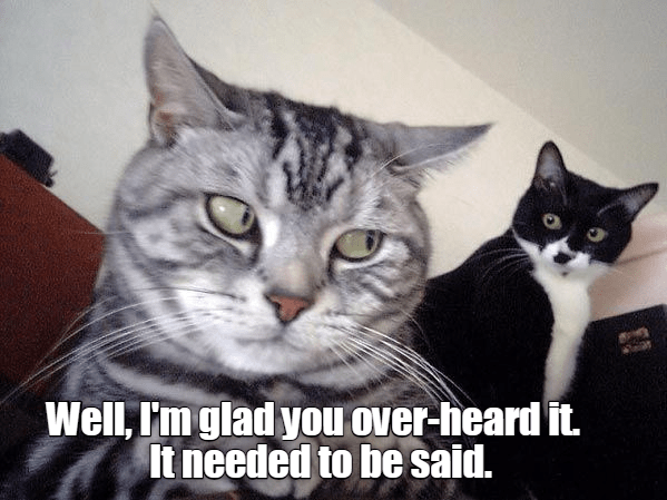 Cat - Well, I'm glad you over-heard it. It needed to be said.