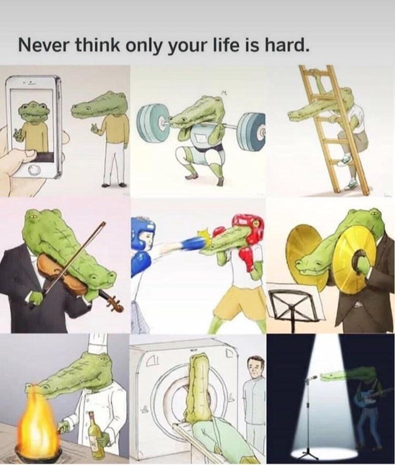 amusing meme of a humanoid alligator whose long nose stops him from doing things