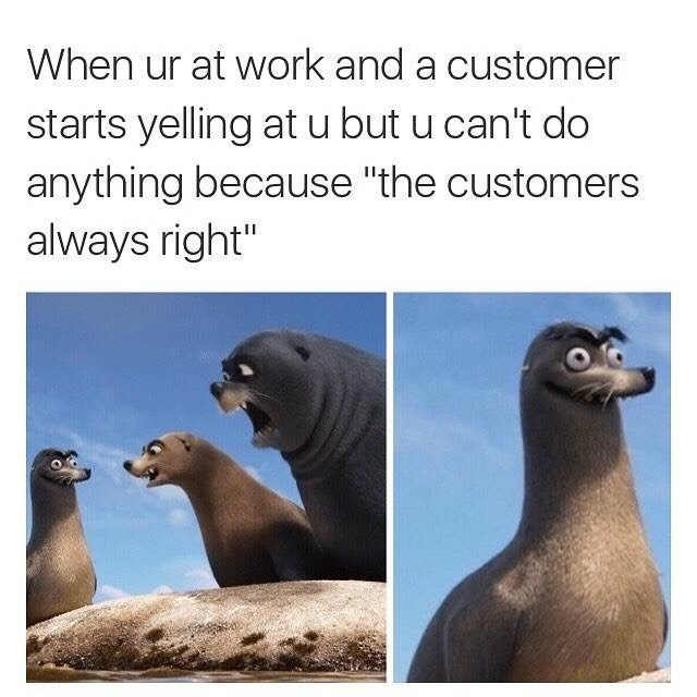 """California sea lion cartoon looking stupid - When ur at work and a customer starts yelling at u but u can't do anything because """"the customers always right"""""""