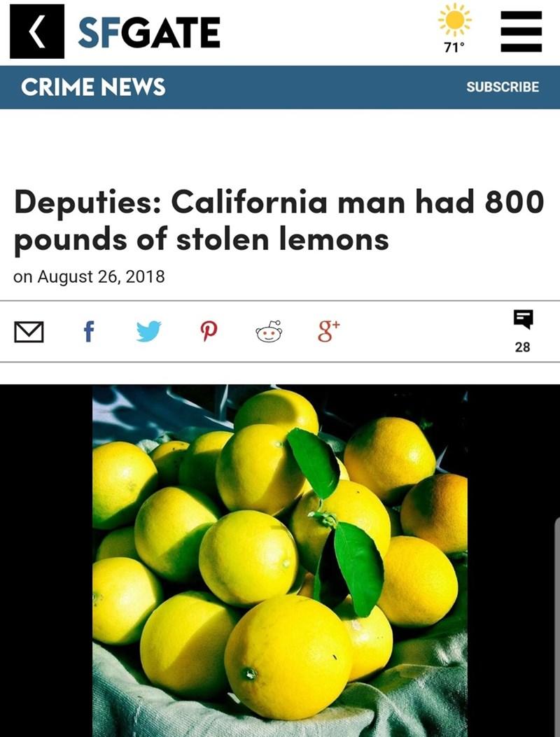 screenshot of news article and picture of lemons Deputies: California man had 800 pounds of stolen lemons