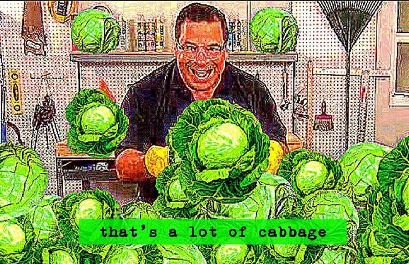 man behind table of cabbages holding cabbage that's a lot of cabbage