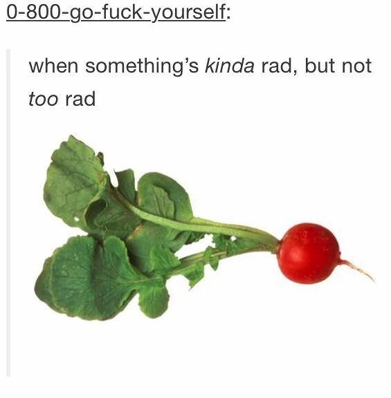 picture of red radish when something's kinda rad, but not too rad