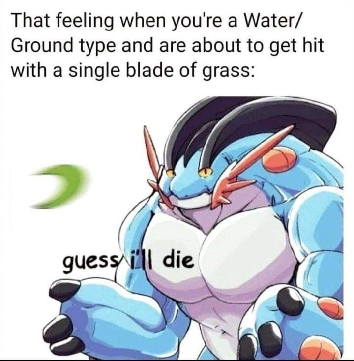 pokemon character looking hopeless That feeling when you're a Water/ Ground type and are about to get hit with a single blade of grass: guess ill die