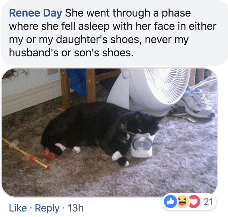 Water - Renee Day She went through a phase where she fell asleep with her face in either my or my daughter's shoes, never my husband's or son's shoes. OU 21 Like Reply 13h