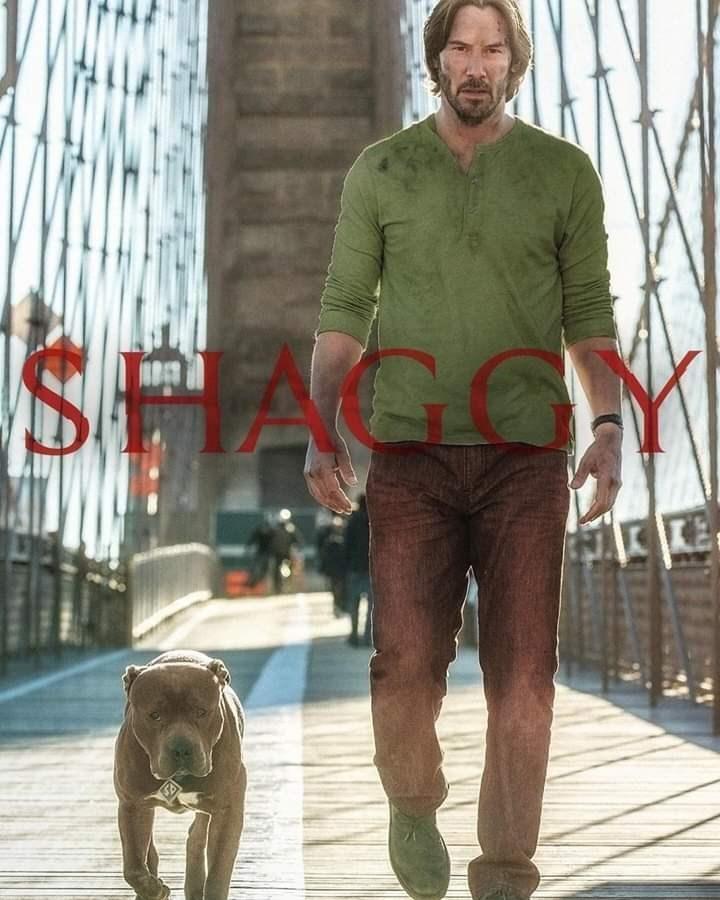 keanu reeves walking next to pitbull dog across bridge shaggy