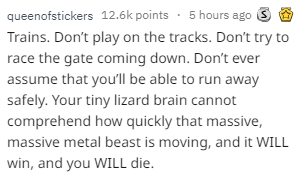 Text - 5 hours ago S queenofstickers 12.6k points Trains. Don't play on the tracks. Don't try to race the gate coming down. Don't ever assume that you'll be able to run away safely. Your tiny lizard brain cannot comprehend how quickly that massive, massive metal beast is moving, and it WILL win, and you WILL die.