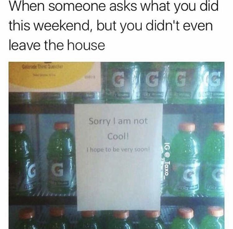 meme - Product - When someone asks what you didi this weekend, but you didn't even leave the house Gatorade ThitQnche GIG G G Sorry I am not Cool! Thope to be very soon G G