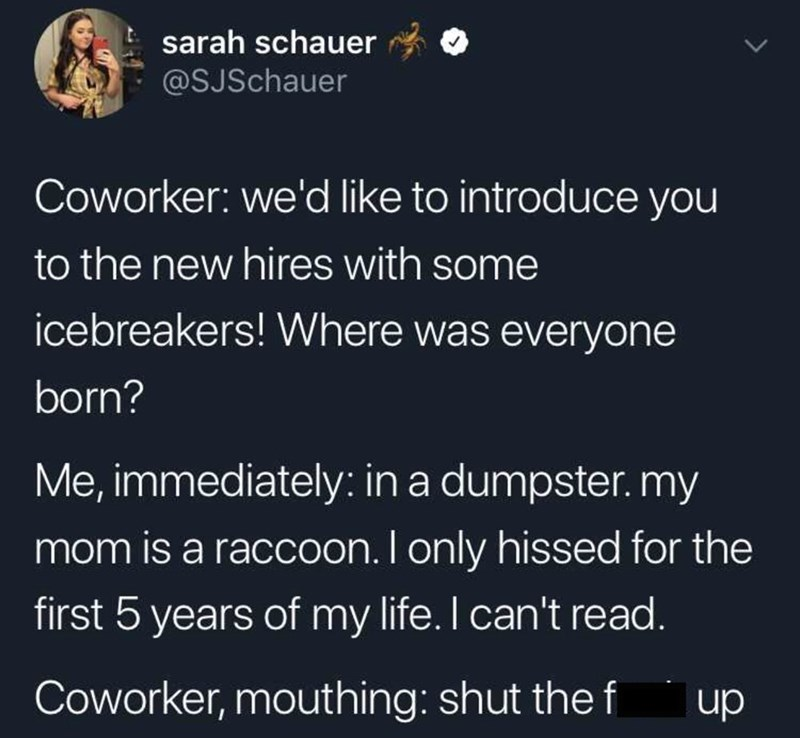 meme - Text - sarah schauer @SJSchauer Coworker: we'd like to introduce you to the new hires with some icebreakers! Where was everyone born? Me, immediately: in a dumpster. my mom is a raccoon. I only hissed for the first 5 years of my life. I can't read. Coworker, mouthing: shut the f up