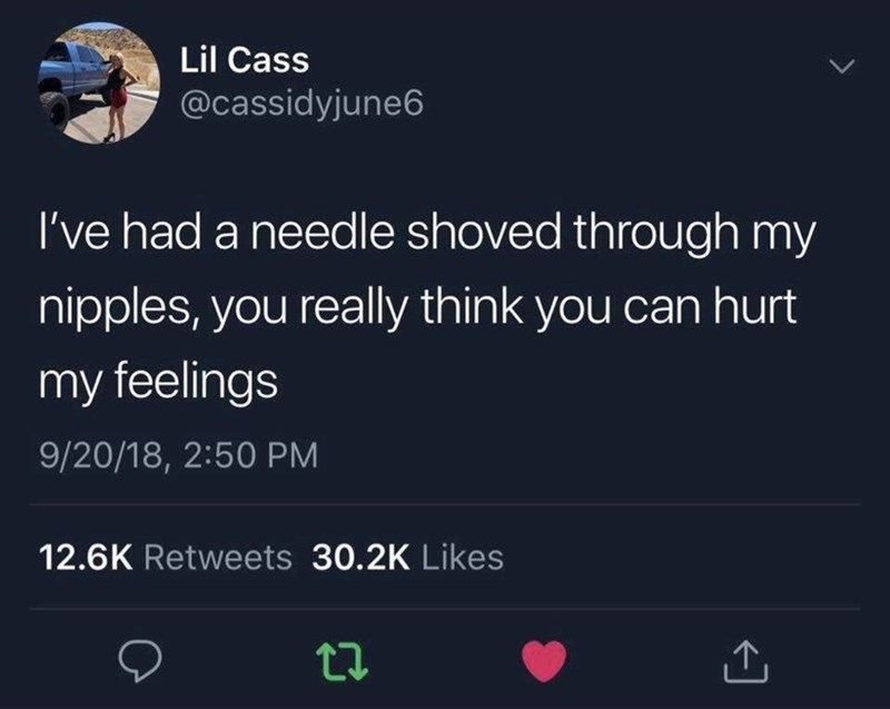 meme - Text - Lil Cass @cassidyjune6 I've had a needle shoved through my nipples, you really think you can hurt my feelings 9/20/18, 2:50 PM 12.6K Retweets 30.2K Likes