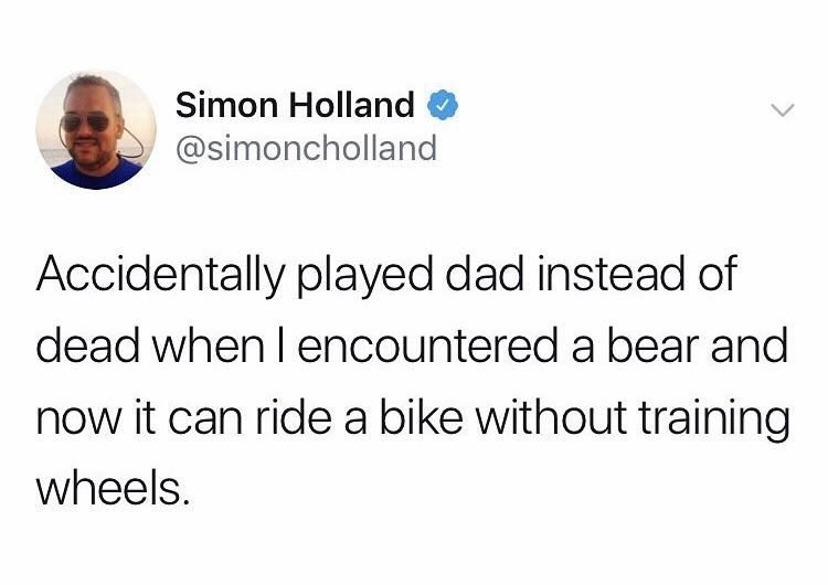meme about showing a bear dad instead of dad