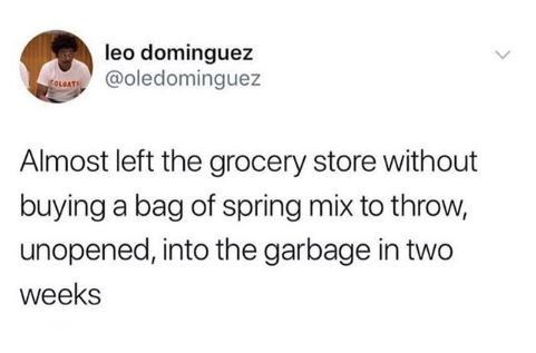 Text - leo dominguez @oledominguez foueATS Almost left the grocery store without buying a bag of spring mix to throw, unopened, into the garbage in two weeks
