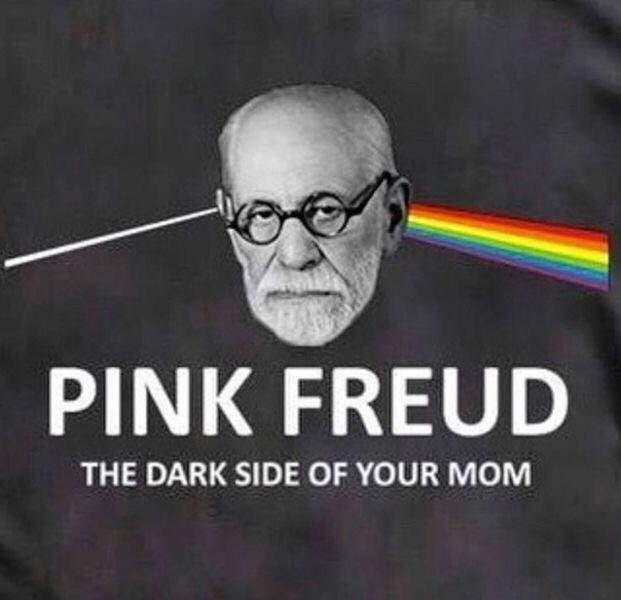 Photo caption - PINK FREUD THE DARK SIDE OF YOUR MOM