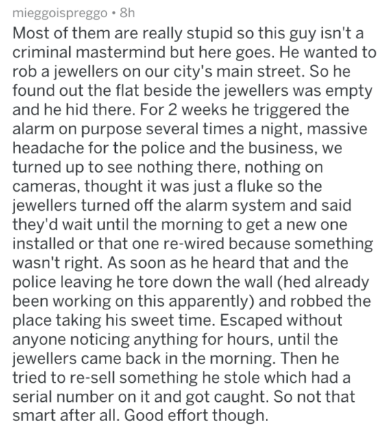Text - mieggoispreggo 8h Most of them are really stupid so this guy isn't a criminal mastermind but here goes. He wanted to rob a jewellers on our city's main street. So he found out the flat beside the jewellers was empty and he hid there. For 2 weeks he triggered the alarm on purpose several times a night, massive headache for the police and the business, we turned up to see nothing there, nothing on cameras, thought it was just a fluke so the jewellers turned off the alarm system and said the