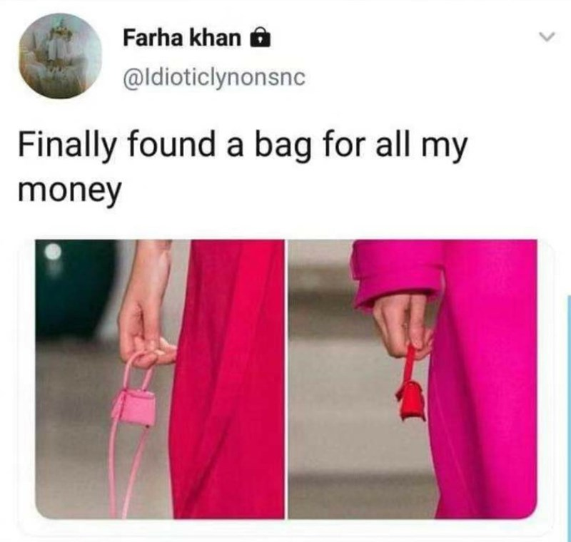 meme of models holding a tiny purse and how that's the only bag that can hold your money