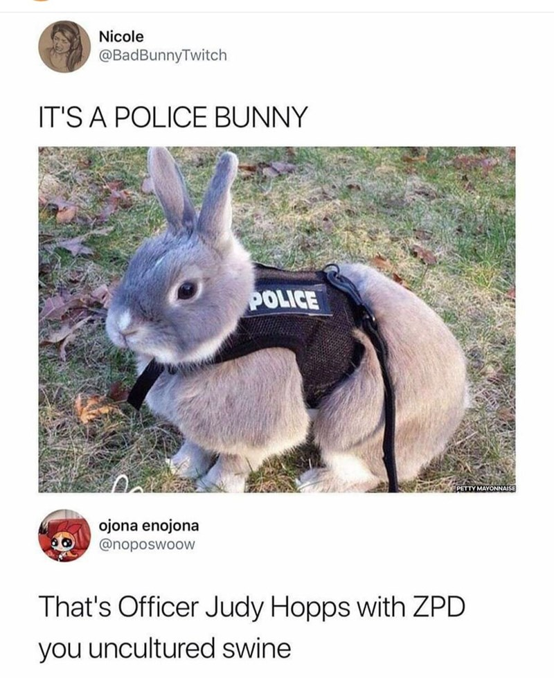 """Tweet that reads, """"It's a police bunny"""" above a pic of a cute bunny wearing a police vest; someone comments below, """"That's Officer Judy Hopps with ZPD you uncultured swine"""""""