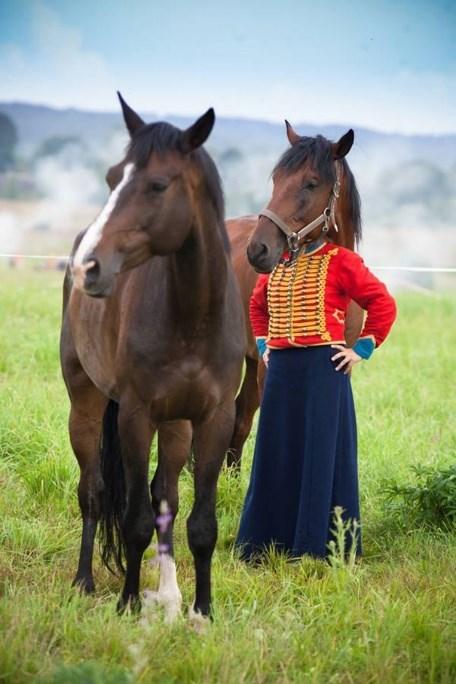 weird perspective pics - Horse