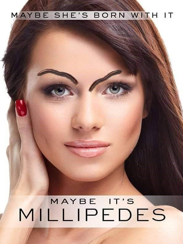 """Pic of a model with millipedes on her face like eyebrows, with text that reads, """"Maybe she's born with it, maybe it's millipedes"""""""