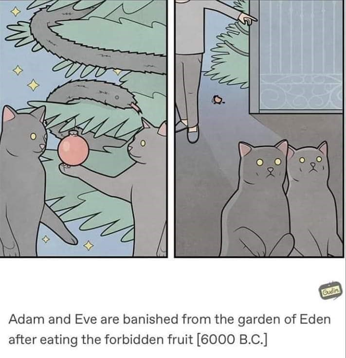 meme of cats as Adam and eve after playing with an ornament on a Christmas tree