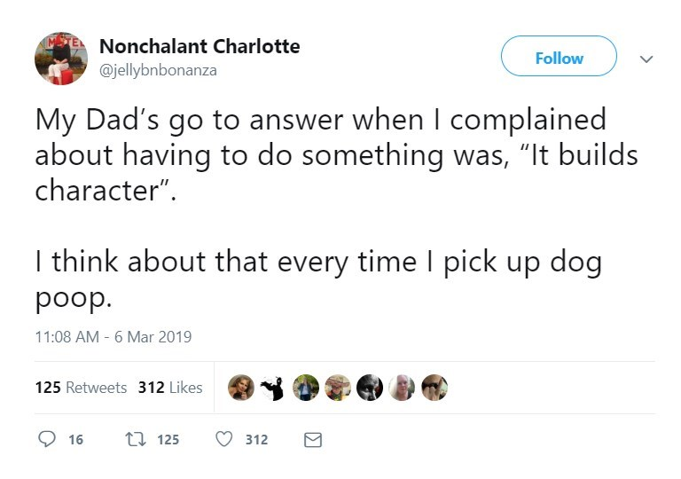 """Text - Nonchalant Charlotte Follow @jellybnbonanza My Dad's go to answer when I complained about having to do something was, """"It builds character"""". I think about that every time I pick up dog dood 11:08 AM - 6 Mar 2019 125 Retweets 312 Likes t 125 16 312 ΙΣ"""