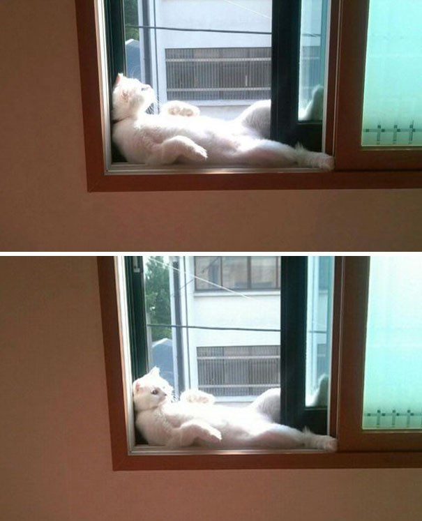 daylight savings nap - Window