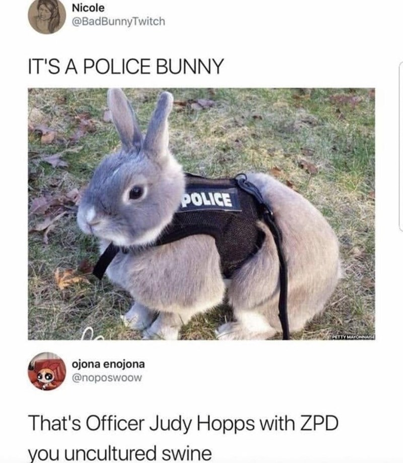wholesome meme - Rabbit - Nicole @BadBunnyTwitch IT'S A POLICE BUNNY EOE PETTY MAYONNAISE ojona enojona @noposwoow That's Officer Judy Hopps with ZPD you uncultured swine