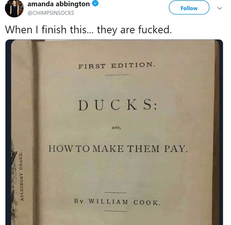 Text - amanda abbington Follow @CHIMPSINSOCKS When I finish this... they are fucked. FIRST EDITION. DUCKS: AND HOW TO MAKE THEM PAY. By WILLIAM COOK. AYLESBURY DRAKE