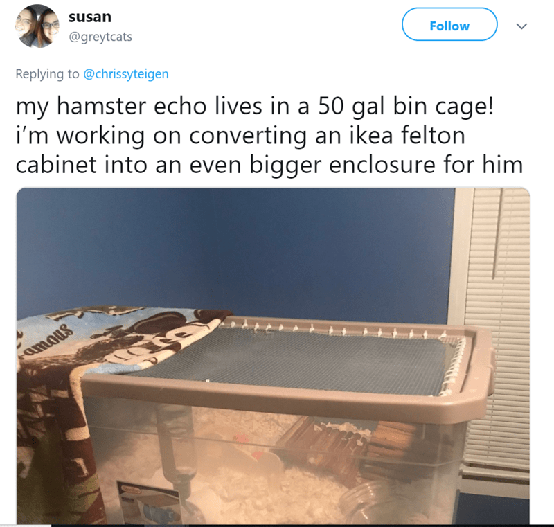 Product - susan @greytcats Follow Replying to@chrissyteigen my hamster echo lives in a 50 gal bin cage! i'm working on converting an ikea felton cabinet into an even bigger enclosure for him amous rline